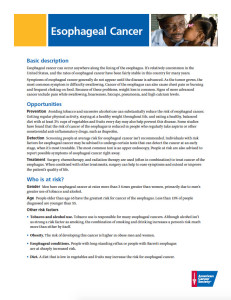Esophageal Cancer Fact Sheet